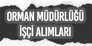 Manisa ve İzmir Orman Müdürlüğü İşçi Alımı, İş Başvurusu