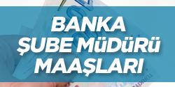 Banka Şube Müdürü Ne Kadar Maaş Alır?