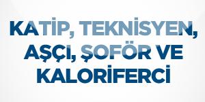 sofor-asci-kaloriferci